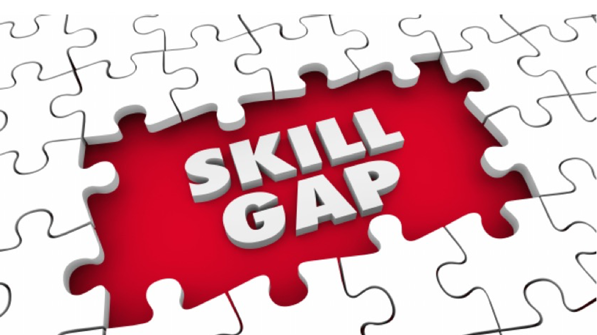 Fixing our skills shortage: what are our most vital missing ingredients?
